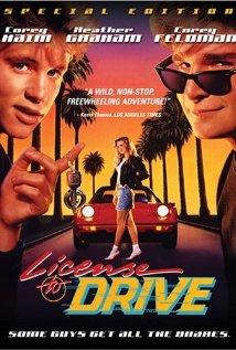 subtitrare License to Drive (1988)