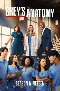 subtitrare Grey's Anatomy (2005)