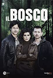 subtitrare Il bosco . Dark Forest  (2015)