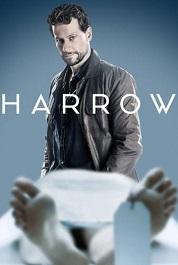 subtitrare Harrow (2018)