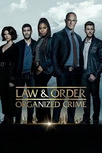 subtitrare Law & Order: Organized Crime (2021)